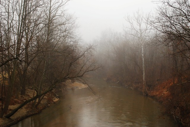 Patapsco River, Maryland (c) Tim Dicke