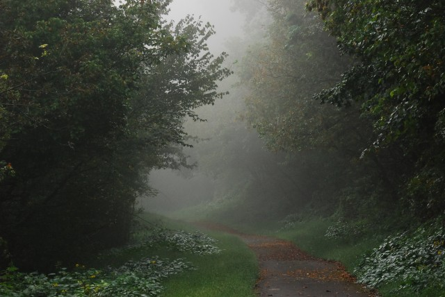 Foggy morning, on West Fork Trail, by Fairmont, WV. (c) Tim Dicke