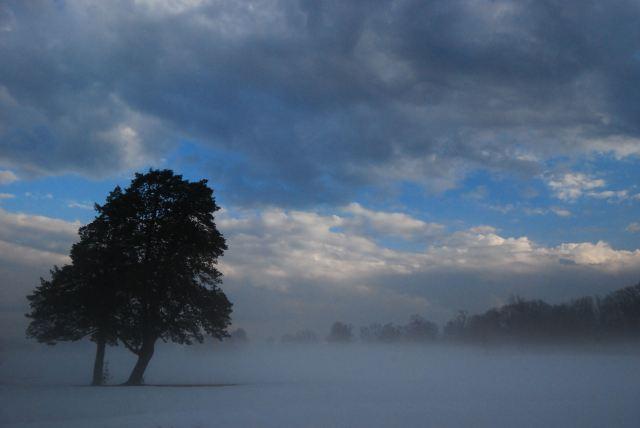 Gunpowder Falls State Park - After rain... fog from snow. (c) Tim Dicke
